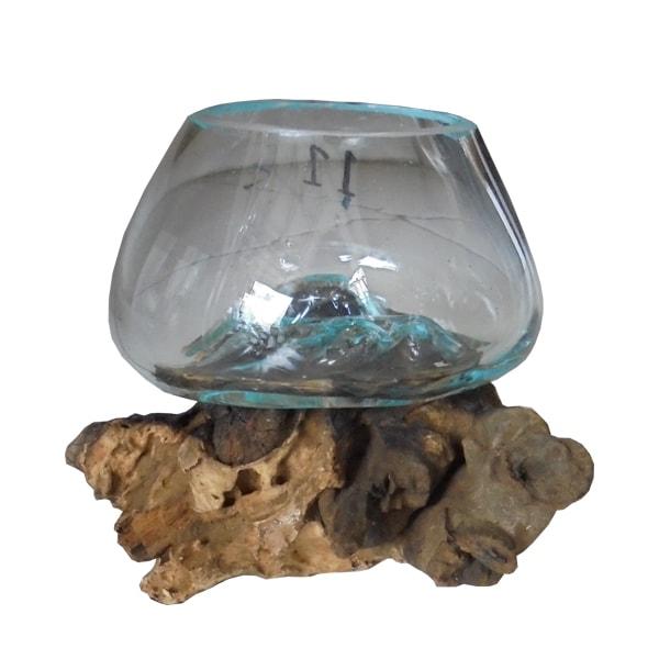 blown glass on driftwood